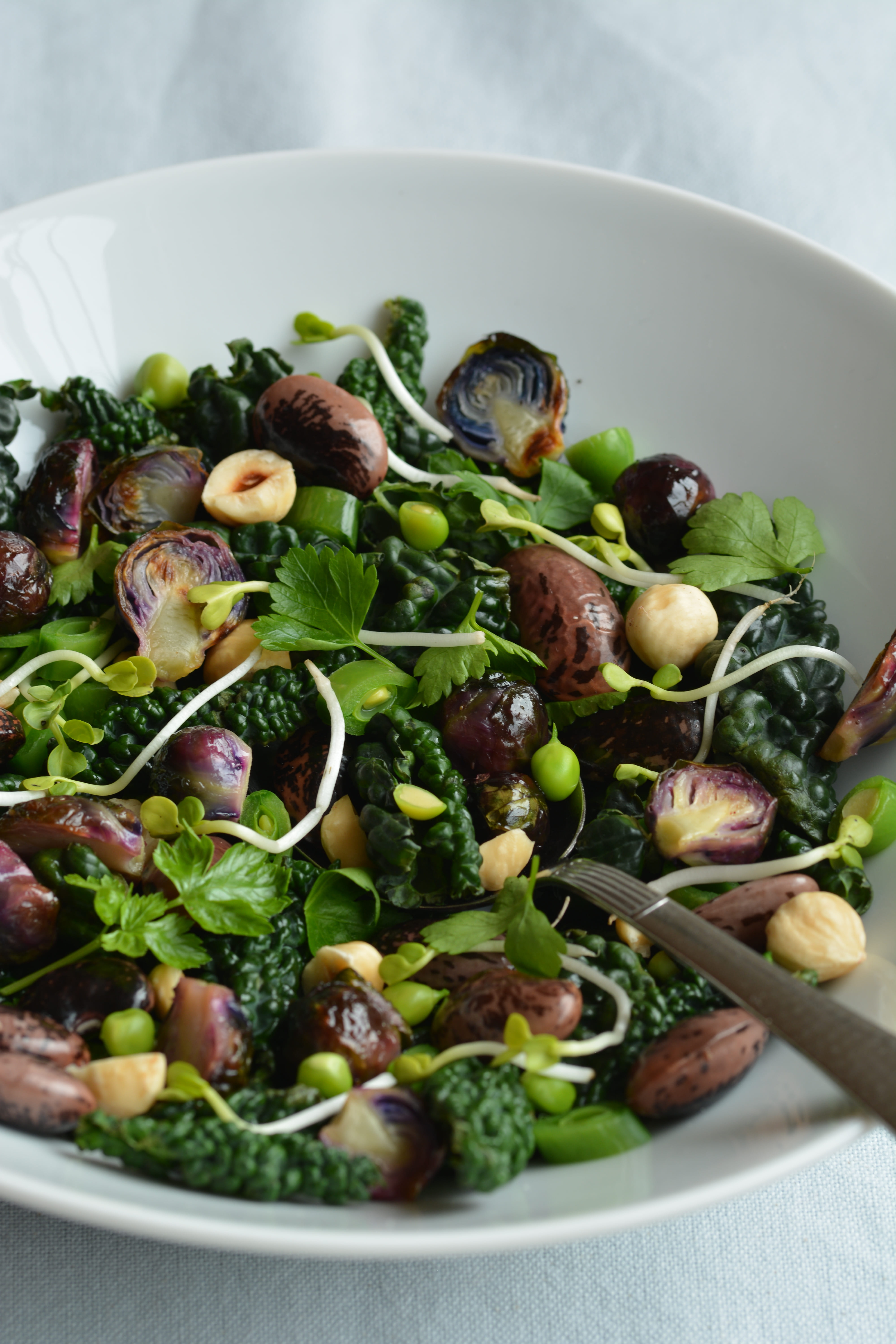 bean salad 2/2 cavolo nero with scarlet runner beans and roasted purple brussels sprouts